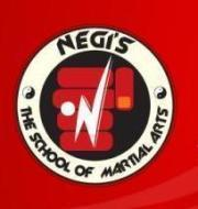 Negis The School Of Martial Arts photo