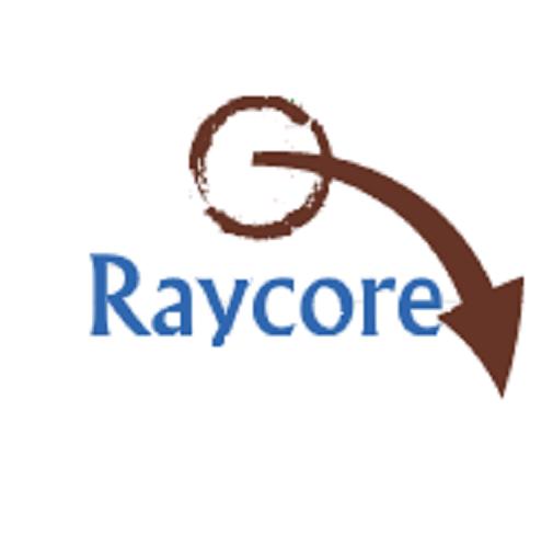 Raycore in Sector 9 Noida, Noida