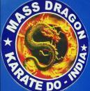 Mass Dragon photo