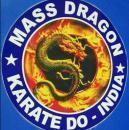 Mass Dragon photo