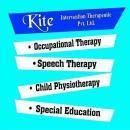Kite -Intervention Therapeutic photo