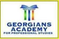 Georgians Academy For Professional Studies photo