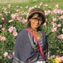 Charmi D. photo