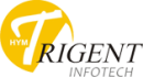 Trigent Infotech Pvt Ltd photo