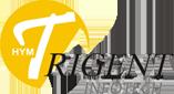 Trigent Infotech Pvt Ltd Infor ERP institute in Noida
