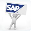 SAP ERP Training  photo
