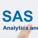 SAS Analytics And IT Services photo