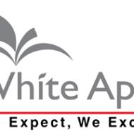 White Apple Software Services Web Designing institute in Noida
