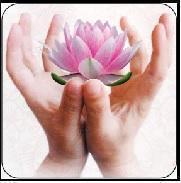 Lotus Health And Education Centre Holistic Healing institute in Mumbai