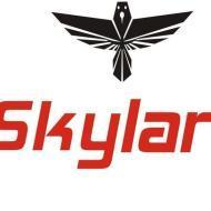 Skylark Spoken English institute in Ambala