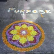 Purpose T. photo