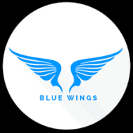 Bluewings photo