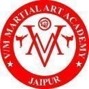 VM Martial Art Academy photo