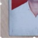 Hari haran photo