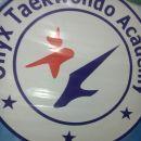 Onyx Taekwondo Academy photo