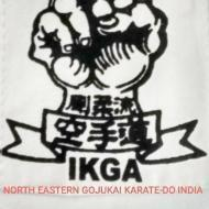 North Eastern Gojukai Karate Do India photo
