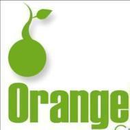 Orange consulting photo