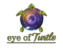 Eye Of Turtle photo