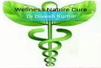 Wellness Nature Cure Yoga institute in Delhi