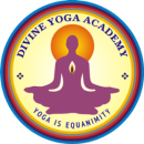 Divine Yoga Academy photo