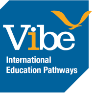 VIBE International Education Pathways photo