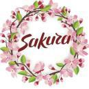Sakura Institute Of Foreign Languages photo