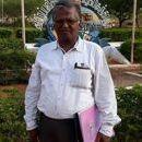 Sagul Hameed photo