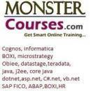Monstercourses photo