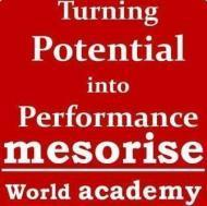Mesorise World Academy photo