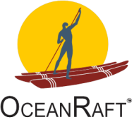 OceanRaft Solutions RPA institute in Chennai