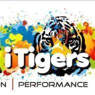 The Rock I Tigers Guitar institute in Bangalore