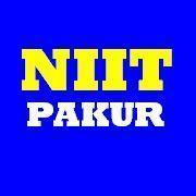 Niit P. photo