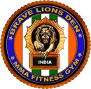 Brave Lions Den MMA Fitness GYM photo