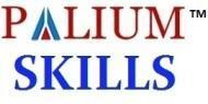 Palium Skills photo