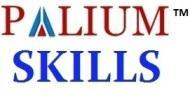 Palium Skills Staad Pro institute in Kolkata