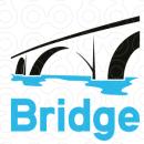 Bridge Institute photo