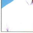 Dr. Lakshmikanth picture