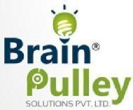 Brainpulley S. photo