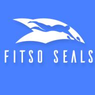 Fitso SEALs - Premium Swimming Classes photo