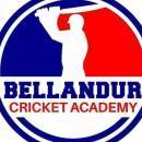 Bellandur Cricket academy photo