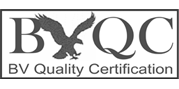BV Quality ISO Certification photo