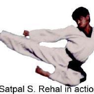 Taekwondo Academy of Punjab photo