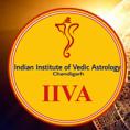 IIVA Astrology Classes photo