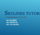Skylines Home Tutors photo