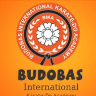 Bodobas Karate International Academy Karnataka Self Defence institute in Bangalore