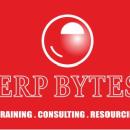 ERP Bytes photo