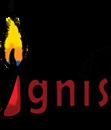 Ignis Careers photo