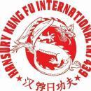 Hansury Kungfu International School Of Chinese Martial Arts photo