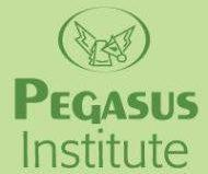 Pe Gasus Institute photo