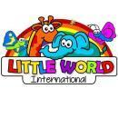 Little World International Preschool And Day Care photo